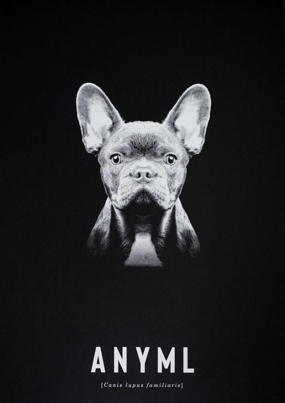 ANYML Siebdruck - Canis | Hund
